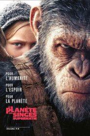 Planète des singes Suprématie: les vieux singes font la grimace